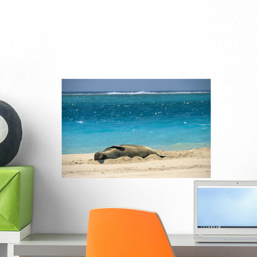 Turquoise Ocean Background Wall Mural