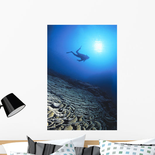 Silhouetted By Sunburst In Blue Ocean Wall Mural