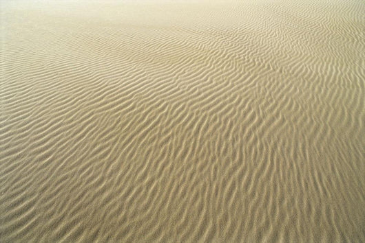 Oregon, Close-Up Of Sand Patterns In The Umpqua Dunes Wall Mural