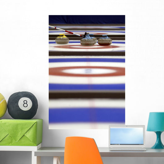 Curling Rocks On Ice Wall Mural