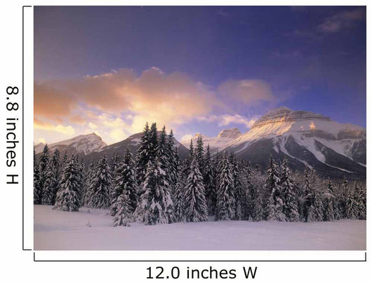Bow Valley And The Massive Range, Banff National Park, Alberta Canada Wall Mural