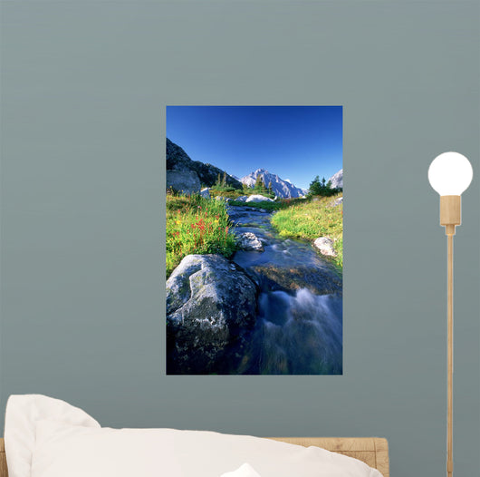 Nabob Pass, Mt Mercator, Waddington Area, British Columbia Wall Mural