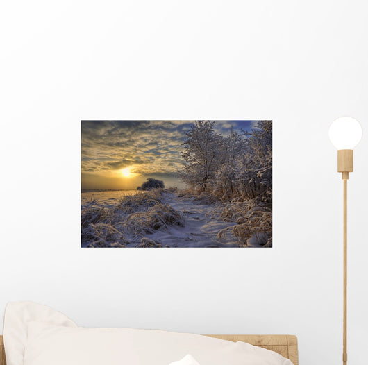 Hoar Frost Covered Trees At Sunrise In The Alberta Prairies Wall Mural