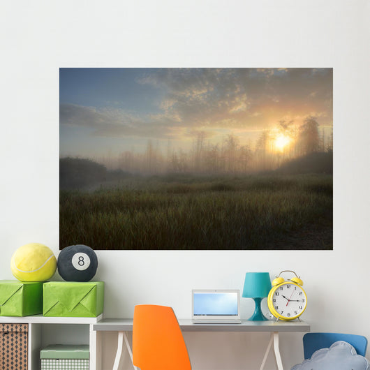 A Summer Sunrise On The Edge Of A Forest Fire Burn In Central Alberta Wall Mural