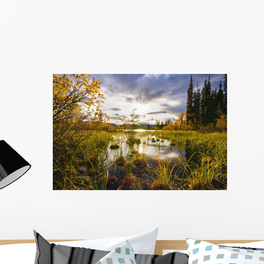 Yukon River And Fall Colours At Sunset, Yukon Wall Mural