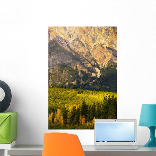 Pyramid Mountain And Fall Colours, Jasper National Park, Alberta Wall Mural