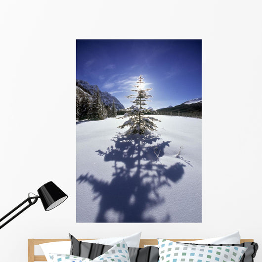 Rampart Ponds In Winter, Banff National Park, Alberta, Canada Wall Mural