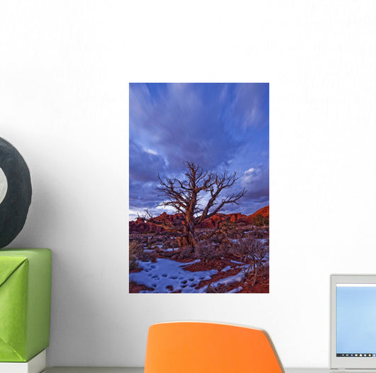 Timed Exposure Of Sunset Clouds Over Tree And Cove Of Caves Wall Mural