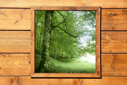 Wooden window jungle green forest view Wall Mural
