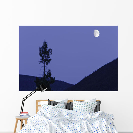 View Of Moon And Mountains, Gaspesie, Quebec Wall Mural