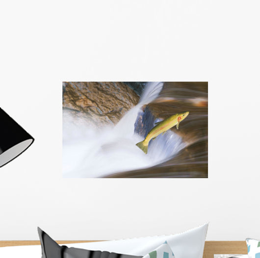 Miigrating Steelhead Salmon Leaping Over Falls Wall Mural
