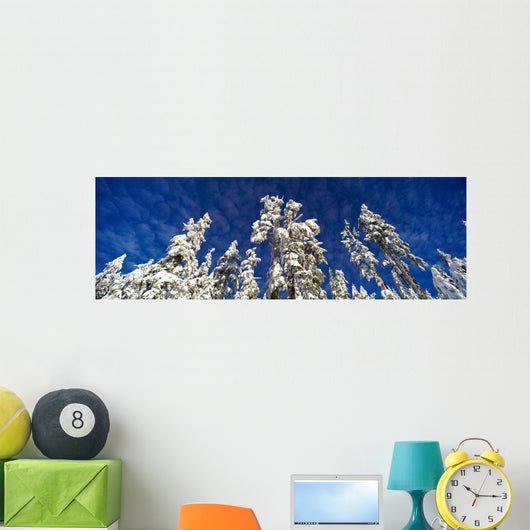 Scenic, Winter, Grouse Mtn, North Vancouver, Bc Wall Mural