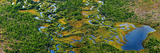 Aerial Of A Wetland, Over Northern Quebec Wall Mural