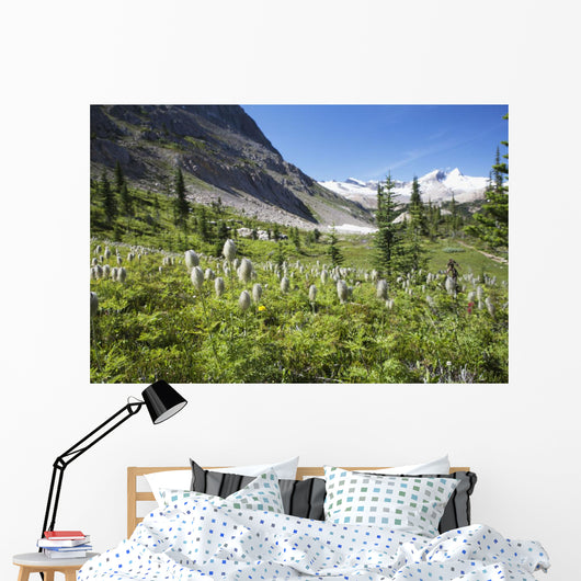 Mountain Meadow With Wildflowers And Glacier Mountains Wall Mural