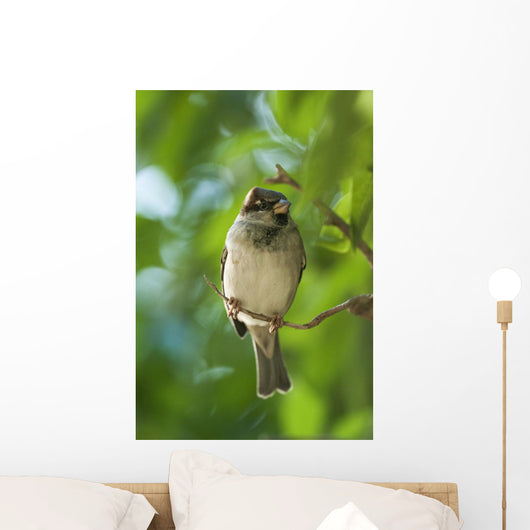 A Sparrow Perched On A Small Branch Wall Mural