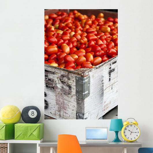 Roma Tomatoes At An Outdoor Market In The Okanagan Valley Wall Mural