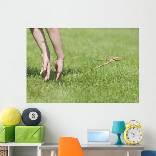 Hands Of Young Child Making Leopard Frog Jump Wall Mural