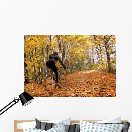Cyclist Riding In Autumn On Humber Trail, Toronto Wall Mural