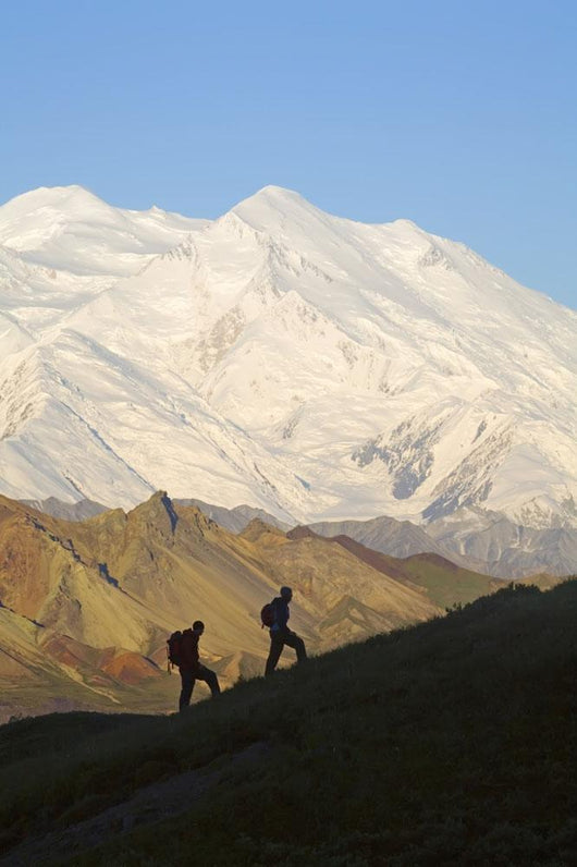 Two Hikers View Mckinley At Grassy Pass Wall Mural