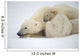 Mother Polar Bear & Cub Huddle In Snow Storm Churchill Canada Winter Wall Mural