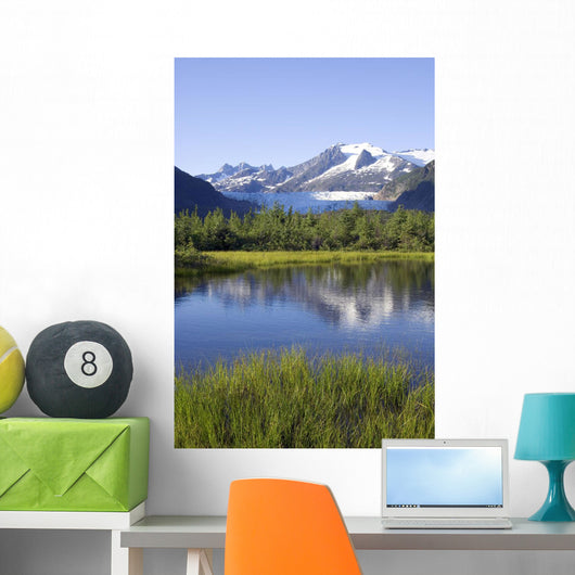 View Of Mendenhall Glacier With Pond And Green Grass Wall Mural