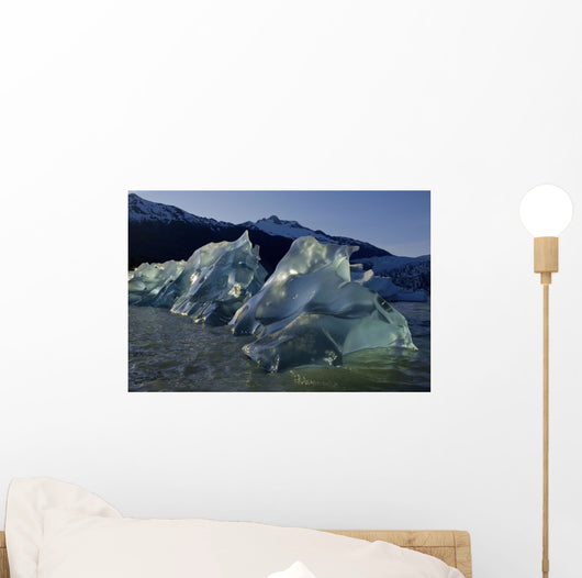 Recently Calved Icebergs Float On The Surface Of Mendenhall Lake Wall Mural
