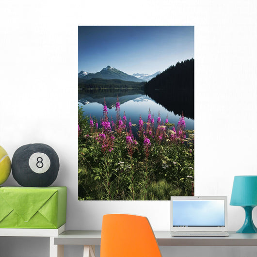 Scenic View Of Auke Lake On A Clear Day With Fireweed Wall Mural