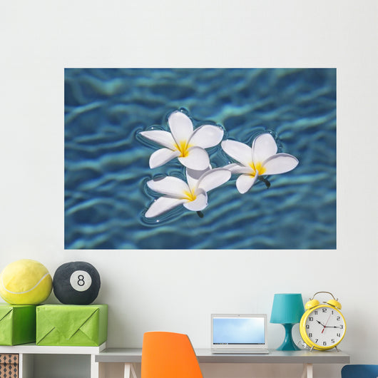 Plumeria flowers floating in clear blue water Wall Mural
