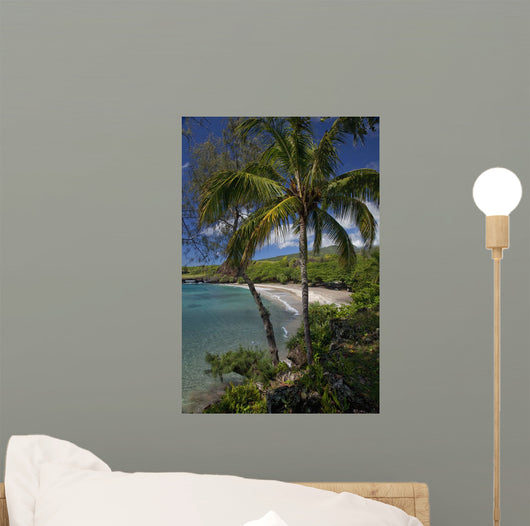 A sunny view of Hamoa Beach with clear ocean on a calm day Wall Mural