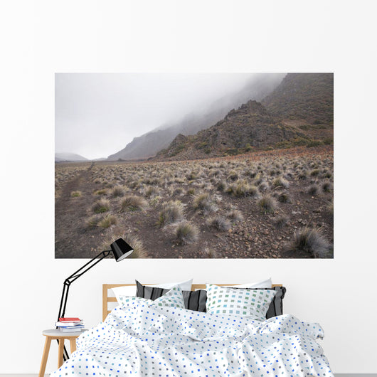 Hawaii, Maui, Haleakala, The hiking trail through the Volcanic Crater Wall Mural