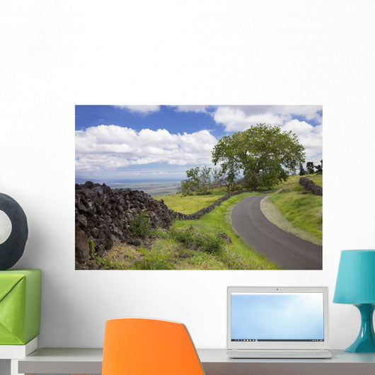 A stone wall lines a country road with views of Maui in the background Wall Mural