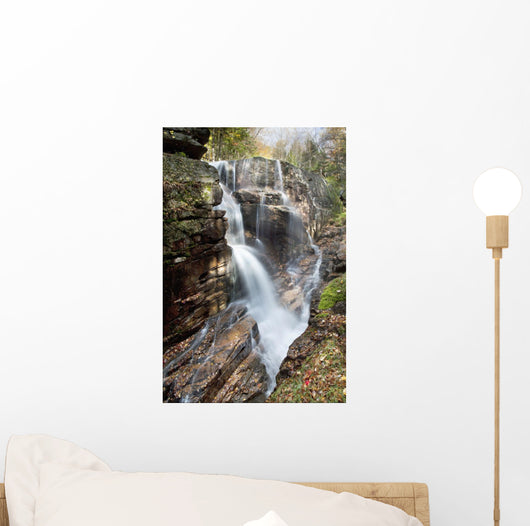 A forest waterfall Wall Mural