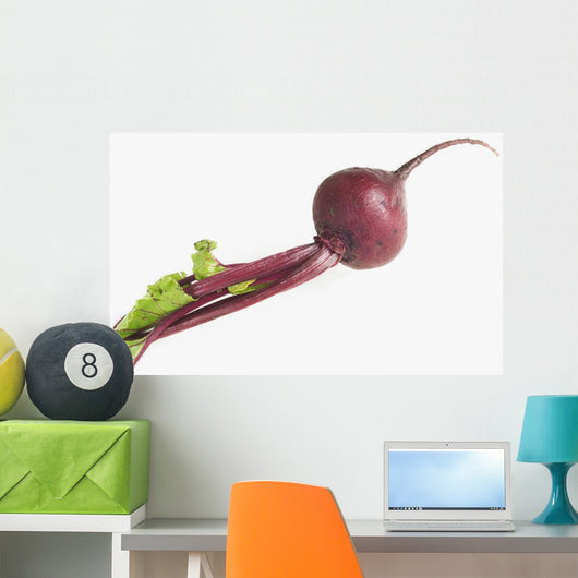 Full Length Studio Shot Of Beet Wall Mural