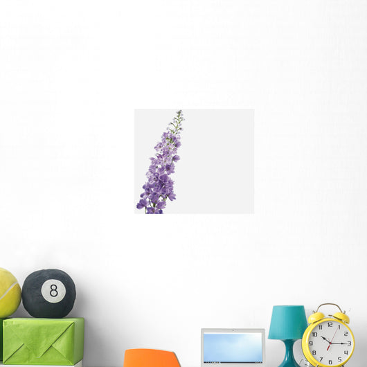 Close-Up Of Lavender Flower Wall Mural