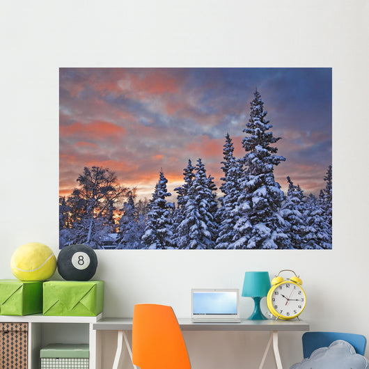 View Of Snow Covered Spruce Trees Wall Mural
