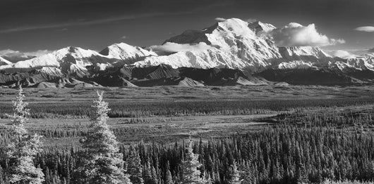 Infrared Panorama Of Denali And The Alaska Range Taken From Wall Mural