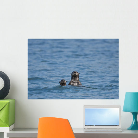 Sea Otters Swimming Wall Mural
