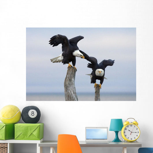 Two Bald Eagles Perched On Driftwood Near Homer Wall Mural