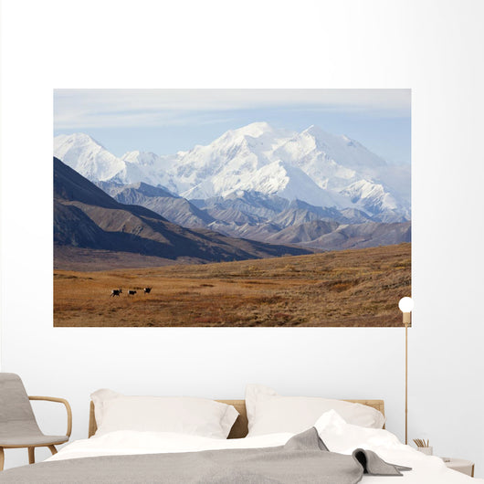 Three Caribou Run Thru The Tundra With Mt Mckinley Looming Wall Mural