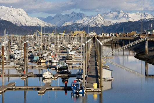 Homer Boat Harbor In Spring, Kenai Peninsula, Alaska Wall Mural