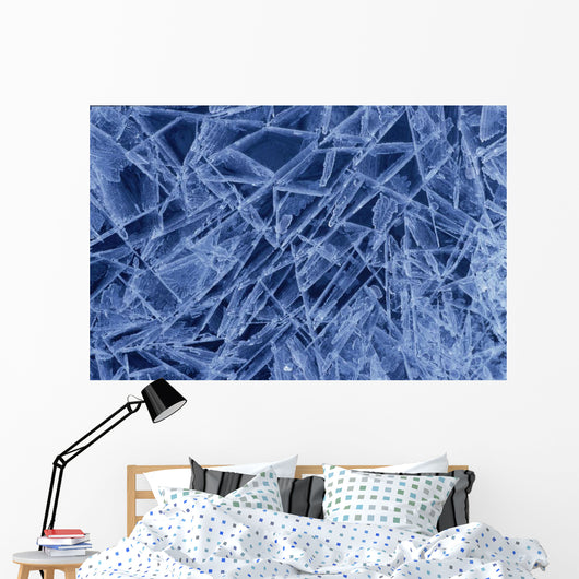 Ice Crystals Formed On Portage River Alaska Winter Wall Mural