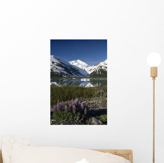 Mountain Reflecting In Portage Lake W/Lupine Sc Ak Wall Mural