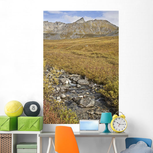 Scenic View Of Hatcher Pass Wall Mural