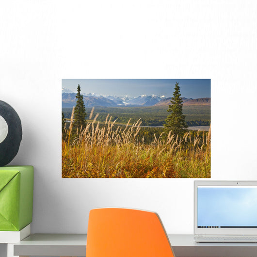 View Of Alaska Range And Eldridge Glacier, Southcentral Alaska, Autumn Wall Mural