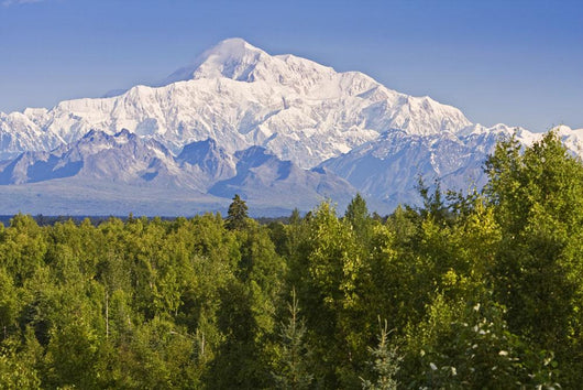 Southside View Of Mt Mckinley Summer, Southcentral, Alaska Wall Mural