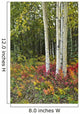 Colorful View Of Aspen Tree Trunks And Fall Foliage Wall Mural