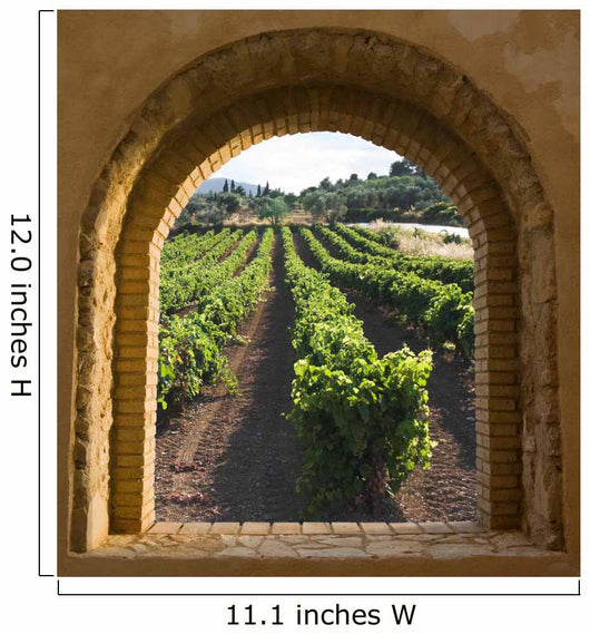 Arched Window on the Vineyard Wall Mural