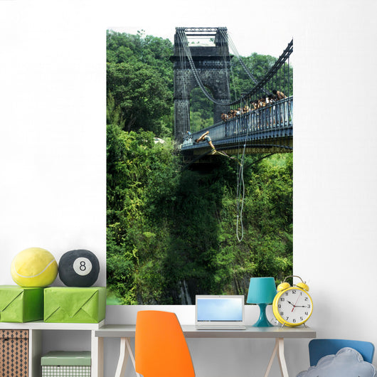 bungee jumping Wall Mural