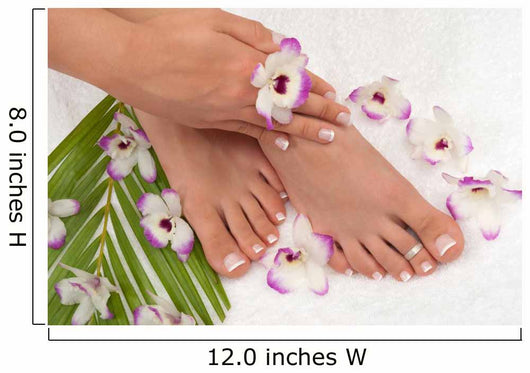 Spa Decals - Pedicure Wall Mural