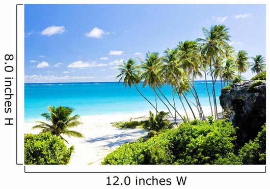 Bottom Bay Barbados Caribbean Wall Mural